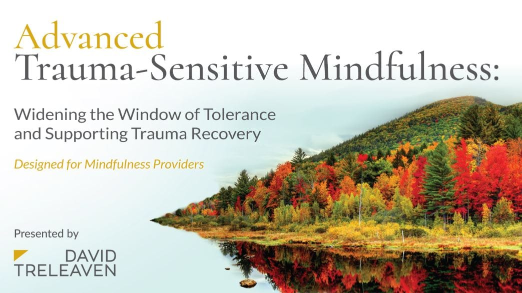 Advanced 201 Course | Online Course Video Editing | Trauma Sensitive Mindfulness